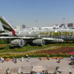 Dubai Miracle Garden - A flowerful Wonderland