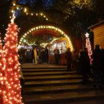 Cologne Stadtgarten Christmas Market