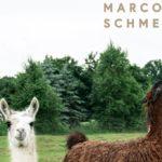 Marco Schmedtje - 18
