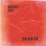 Black River Delta - Shakin'