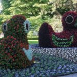 Mainau Island - The Floral Paradise at Lake Constance