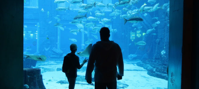 The Lost Chambers Aquarium (Atlantis Hotel Dubai)