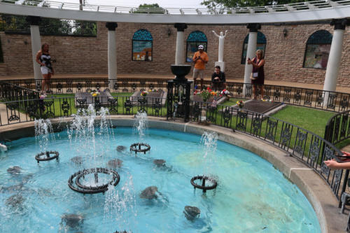 2019-06 Graceland (Memphis)